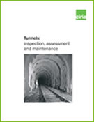 Tunnels: inspection, assessment and maintenance
